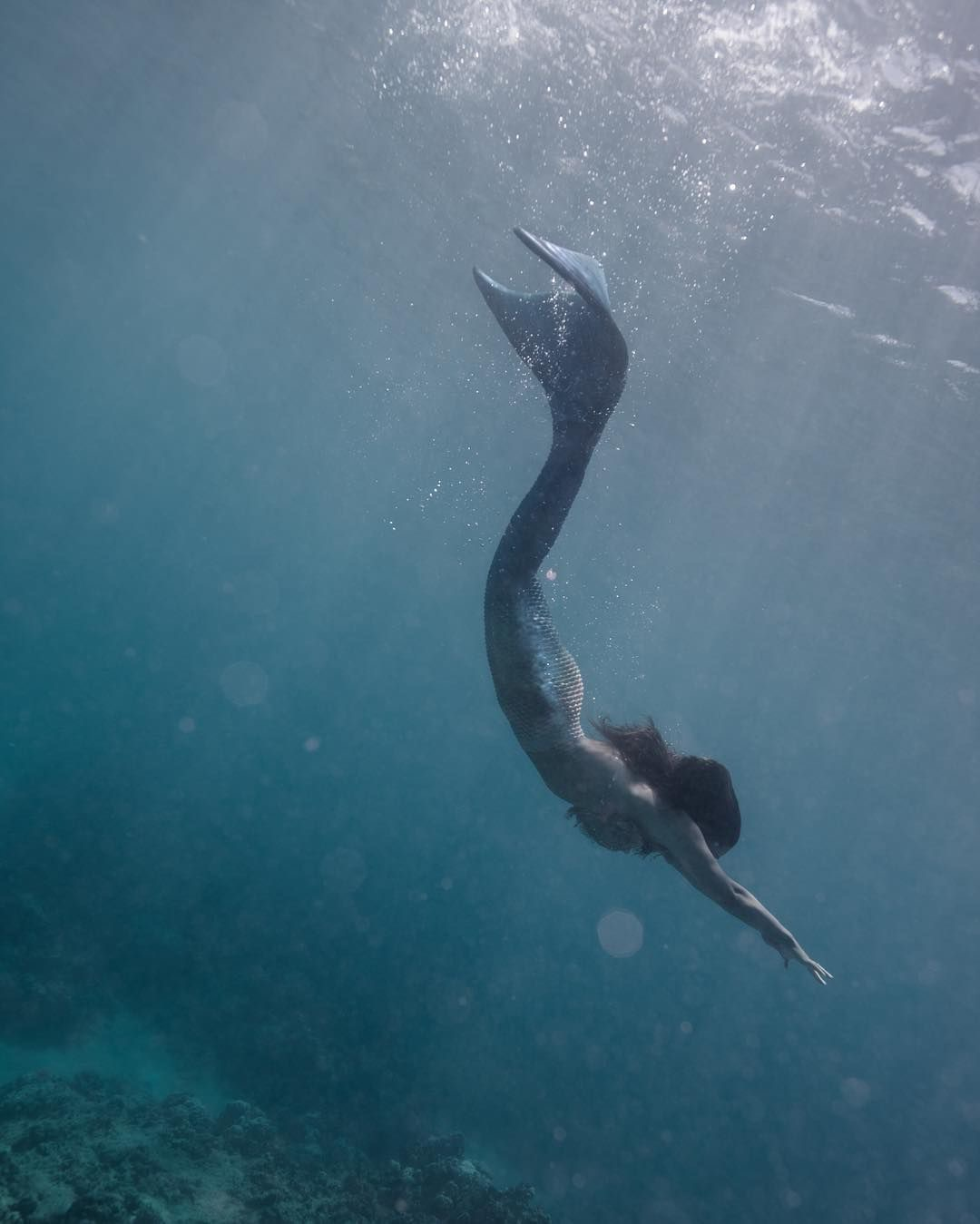 Sirène sous la mer - Caractère Spécial Architecture