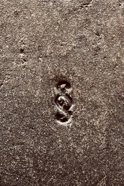 Symbole du caractère spécial gravé - Caractère Spécial Architecture