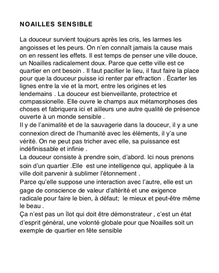Matthieu Poitevin - Noailles sensible